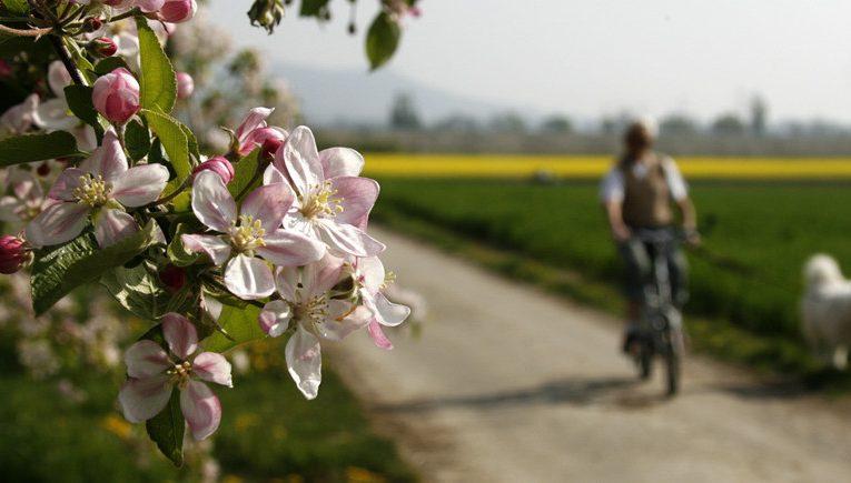[新聞] 世界上5個美得令人窒息的自行車騎行地