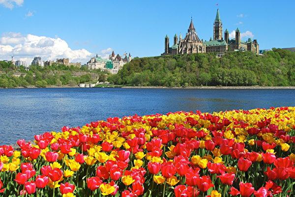 [新聞] 加拿大移民與投資受青睞 全球排名再奪冠